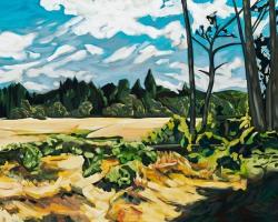 Wilder Eucalyptus Grove, 2013