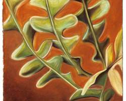 "Epiphyllum, 2006  (20.5"" x 12"")"