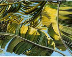 "Hanalei Banana Leaves, 2006 (26"" x 20.25"")"