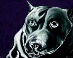 """Black Dog, Purple  2012 (19.75"""" x 27.75"""")"""
