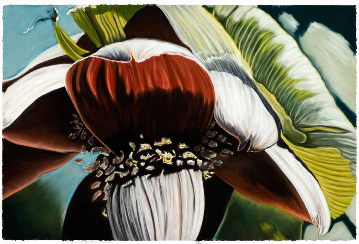 Banana Blossom for Joe and Tanya, 2007